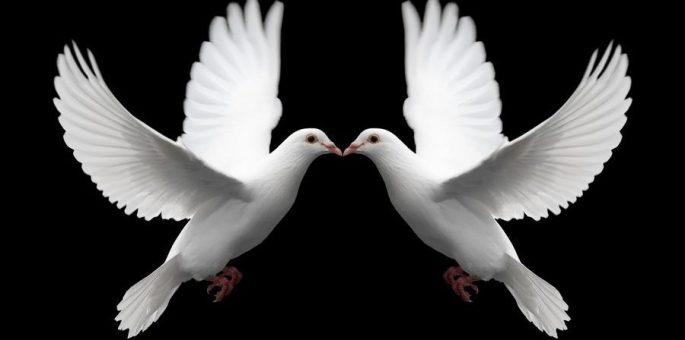 cropped-doves.jpg